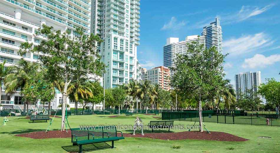 dog park in Edgewater Miami