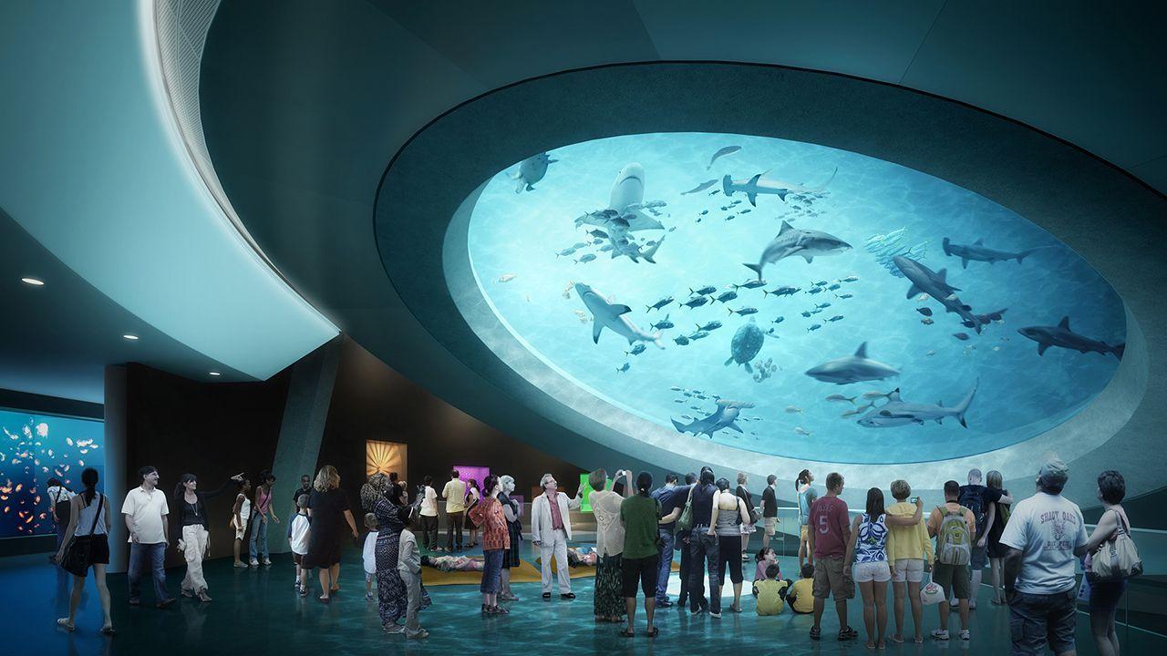 Gulfstream Aquarium