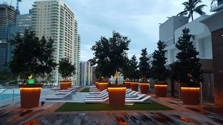 SLS Brickell Pool (3)