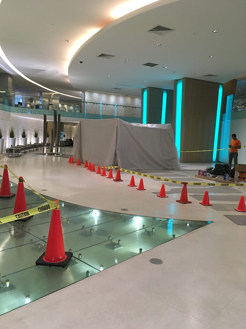 Mint Lobby Construction