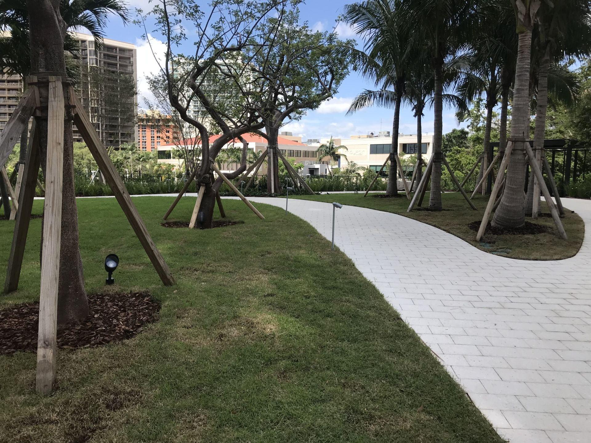 Park Grove landscape design by Enzo Enea