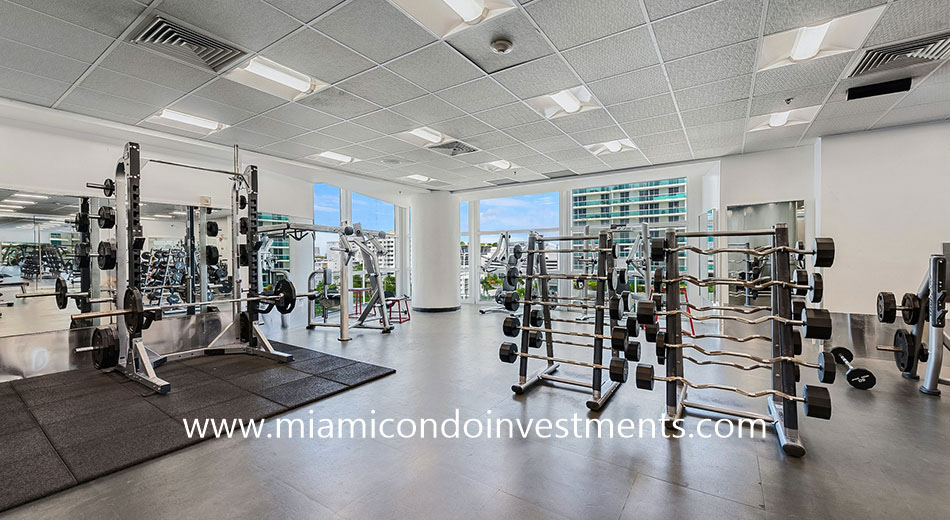 free weights at Flamingo South Beach gym